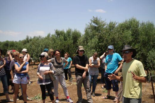טיול ג'יפים לקבוצות בגולן