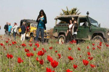 טיול ג'יפים ברמת הגולן באביב